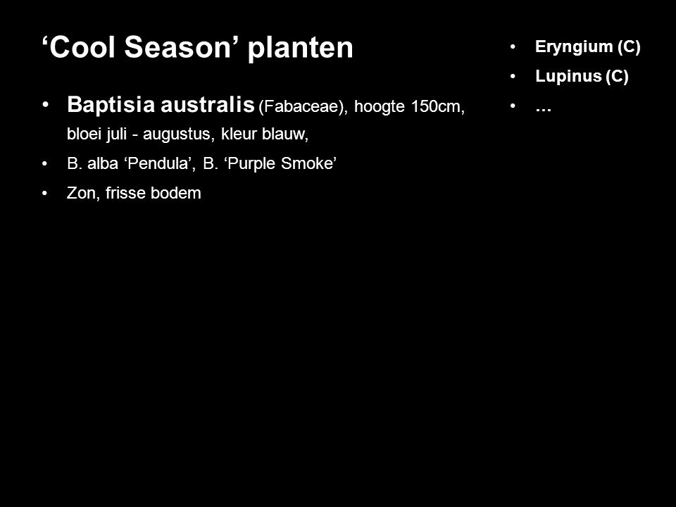 Baptisia australis (Fabaceae), hoogte 150cm, bloei juli - augustus, kleur blauw, B. alba 'Pendula', B. 'Purple Smoke' Zon, frisse bodem 'Cool Season'