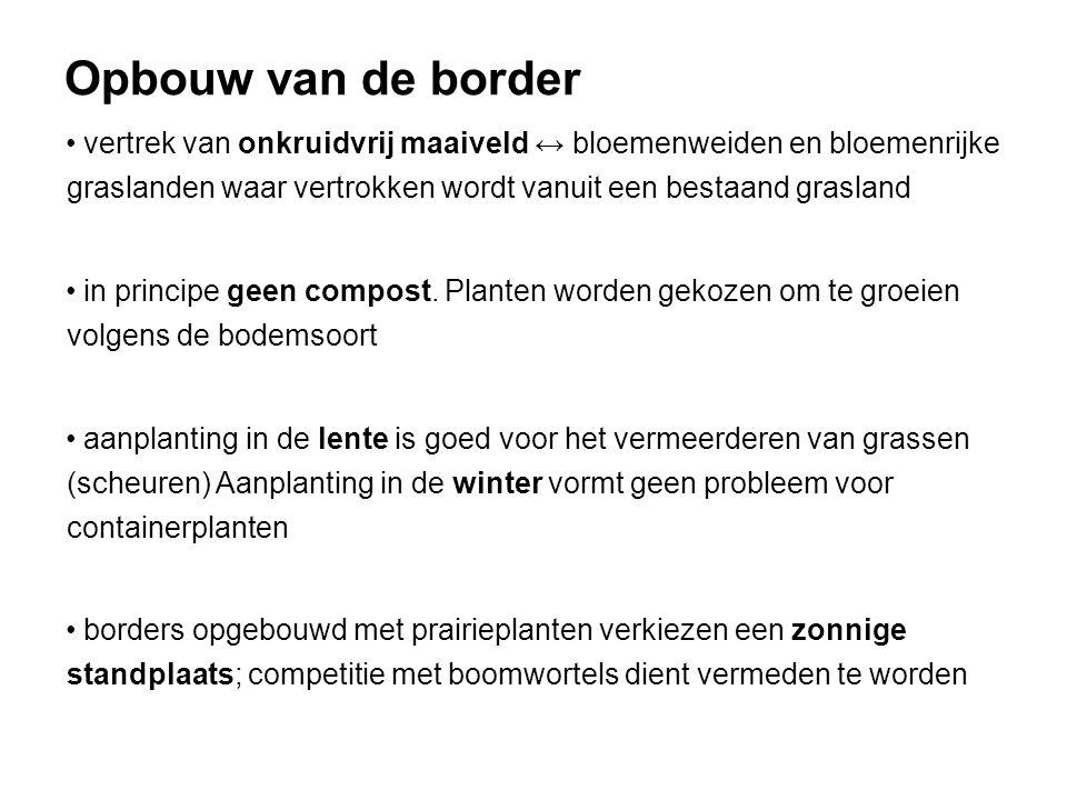 Opbouw van de border vertrek van onkruidvrij maaiveld ↔ bloemenweiden en bloemenrijke graslanden waar vertrokken wordt vanuit een bestaand grasland in principe geen compost.