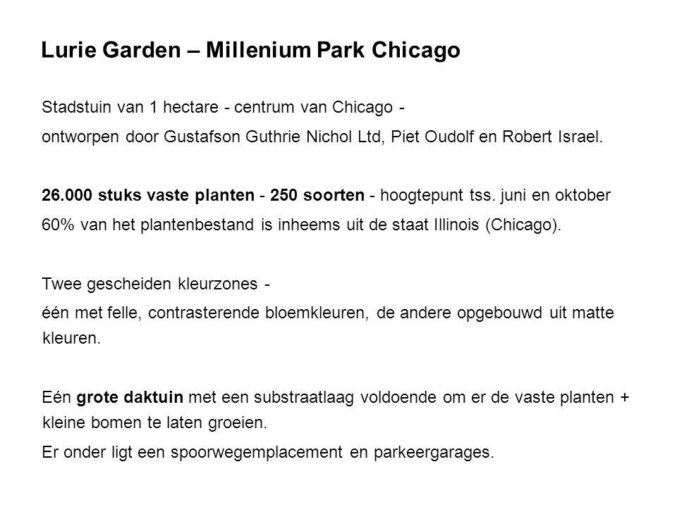 Lurie Garden – Millenium Park Chicago Stadstuin van 1 hectare - centrum van Chicago - ontworpen door Gustafson Guthrie Nichol Ltd, Piet Oudolf en Robert Israel.
