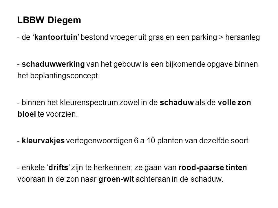 LBBW Diegem - de 'kantoortuin' bestond vroeger uit gras en een parking > heraanleg - schaduwwerking van het gebouw is een bijkomende opgave binnen het