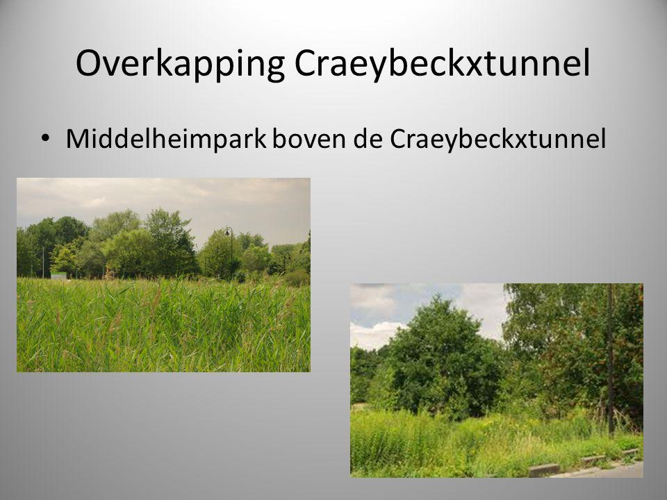 Overkapping Craeybeckxtunnel Middelheimpark boven de Craeybeckxtunnel