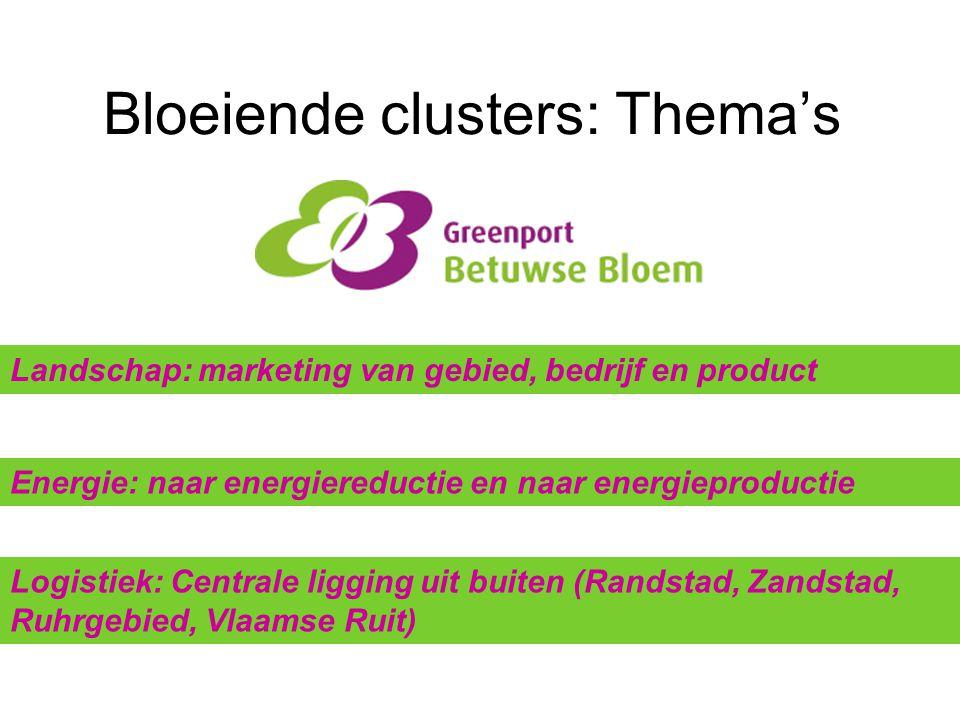 Bloeiende clusters: Thema's Landschap: marketing van gebied, bedrijf en product Energie: naar energiereductie en naar energieproductie Logistiek: Cent