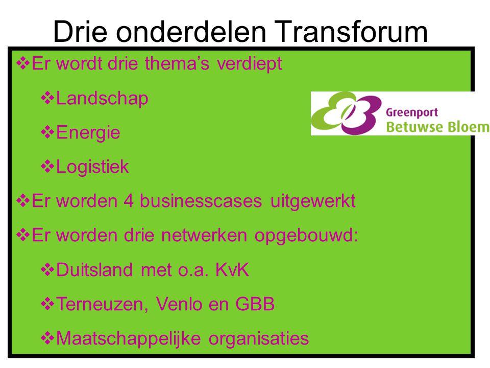 Drie onderdelen Transforum  Er wordt drie thema's verdiept  Landschap  Energie  Logistiek  Er worden 4 businesscases uitgewerkt  Er worden drie