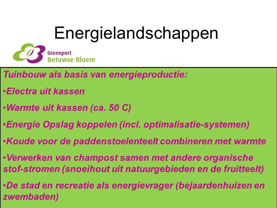 Energielandschappen Tuinbouw als basis van energieproductie: Electra uit kassen Warmte uit kassen (ca. 50 C) Energie Opslag koppelen (incl. optimalisa