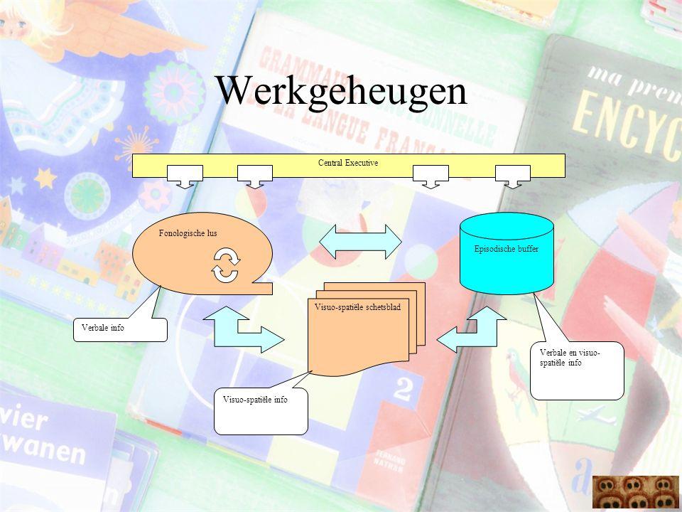 Werkgeheugen Central Executive Episodische buffer Fonologische lus Visuo-spatiële schetsblad Verbale info Visuo-spatiële info Verbale en visuo- spatië
