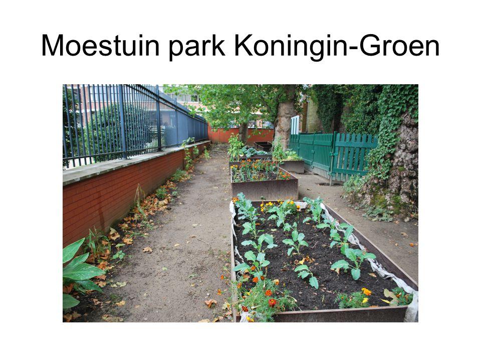 Moestuin park Koningin-Groen