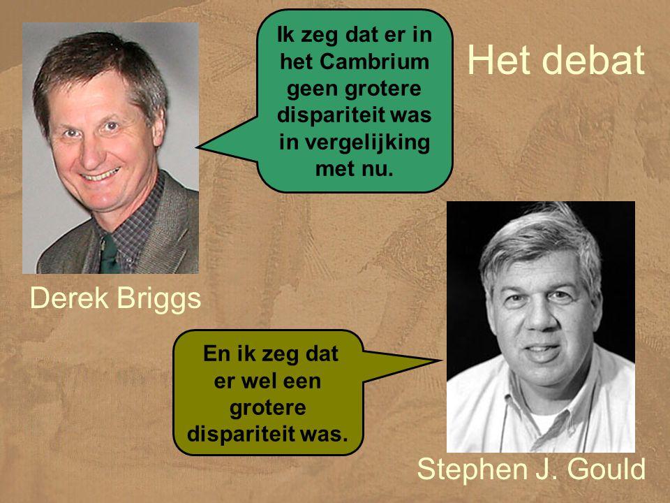 Het debat Derek Briggs Ik zeg dat er in het Cambrium geen grotere dispariteit was in vergelijking met nu.