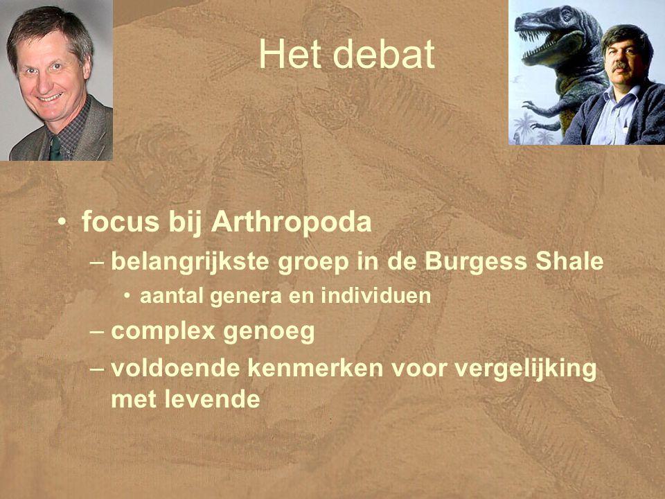 Het debat focus bij Arthropoda –belangrijkste groep in de Burgess Shale aantal genera en individuen –complex genoeg –voldoende kenmerken voor vergelijking met levende