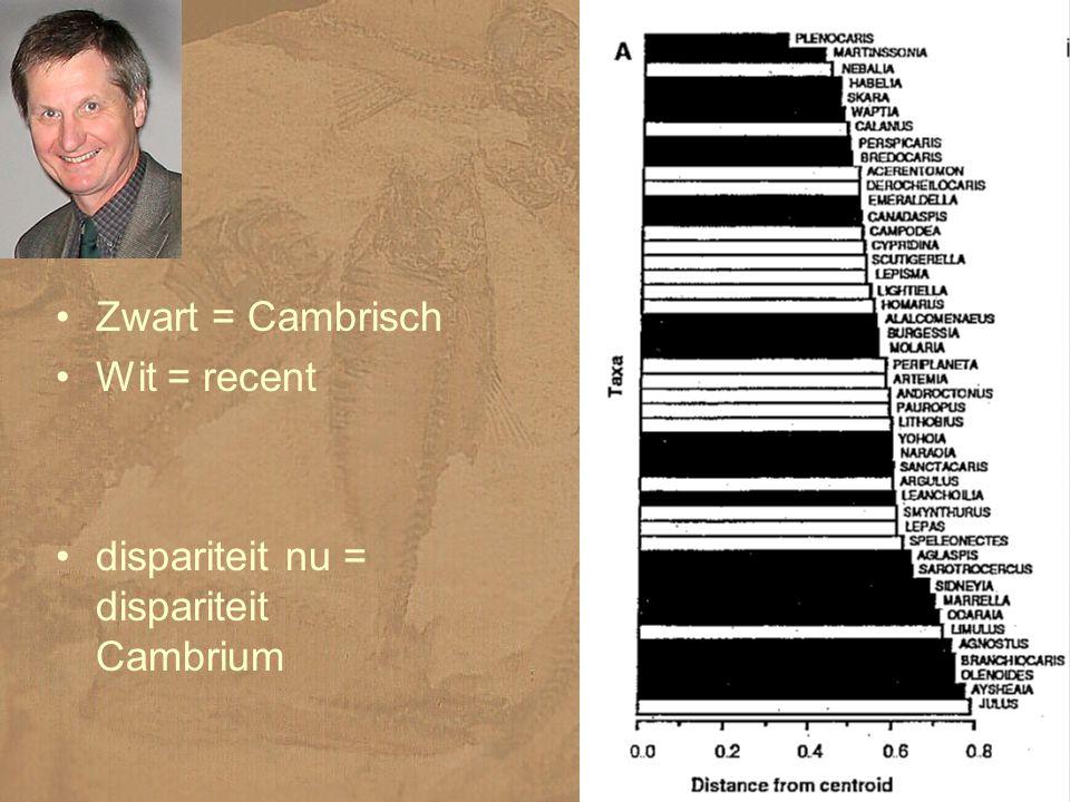 Zwart = Cambrisch Wit = recent dispariteit nu = dispariteit Cambrium