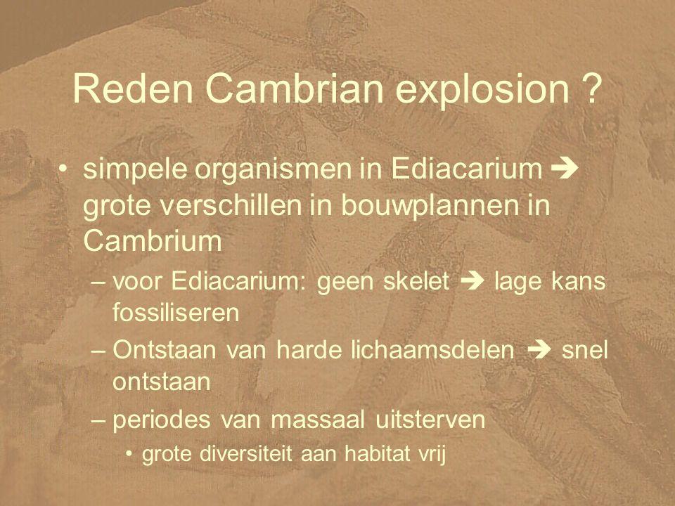 Reden Cambrian explosion .