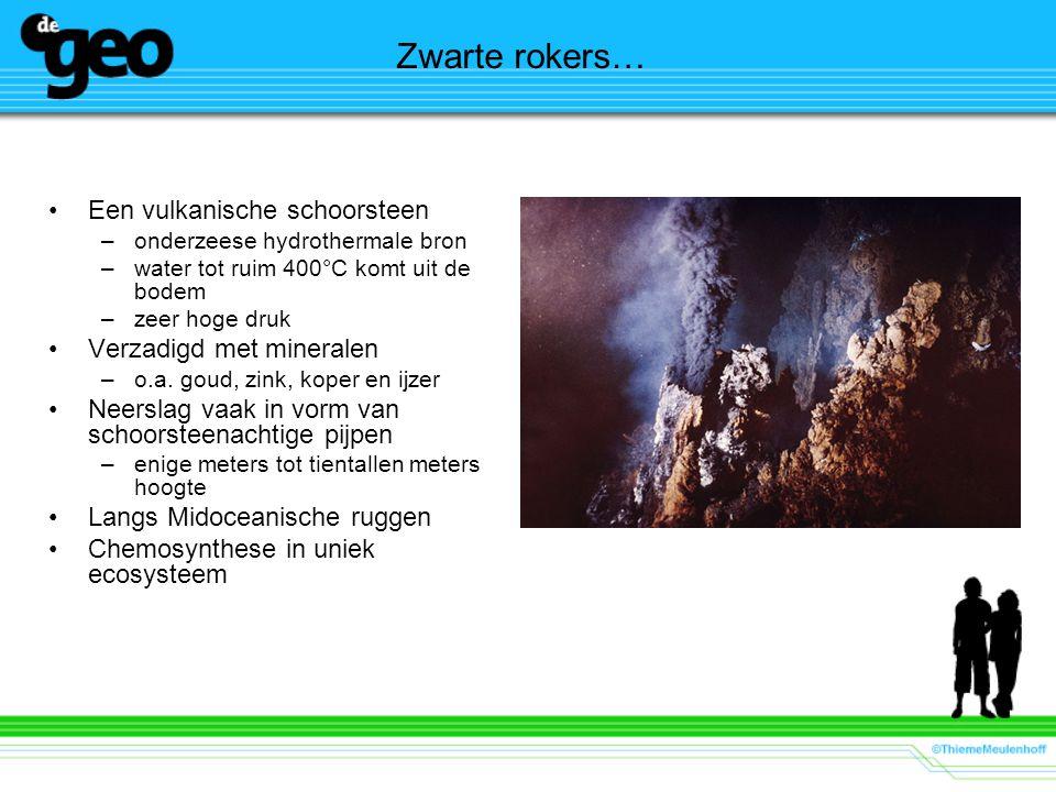 Zwarte rokers… Een vulkanische schoorsteen –onderzeese hydrothermale bron –water tot ruim 400°C komt uit de bodem –zeer hoge druk Verzadigd met minera