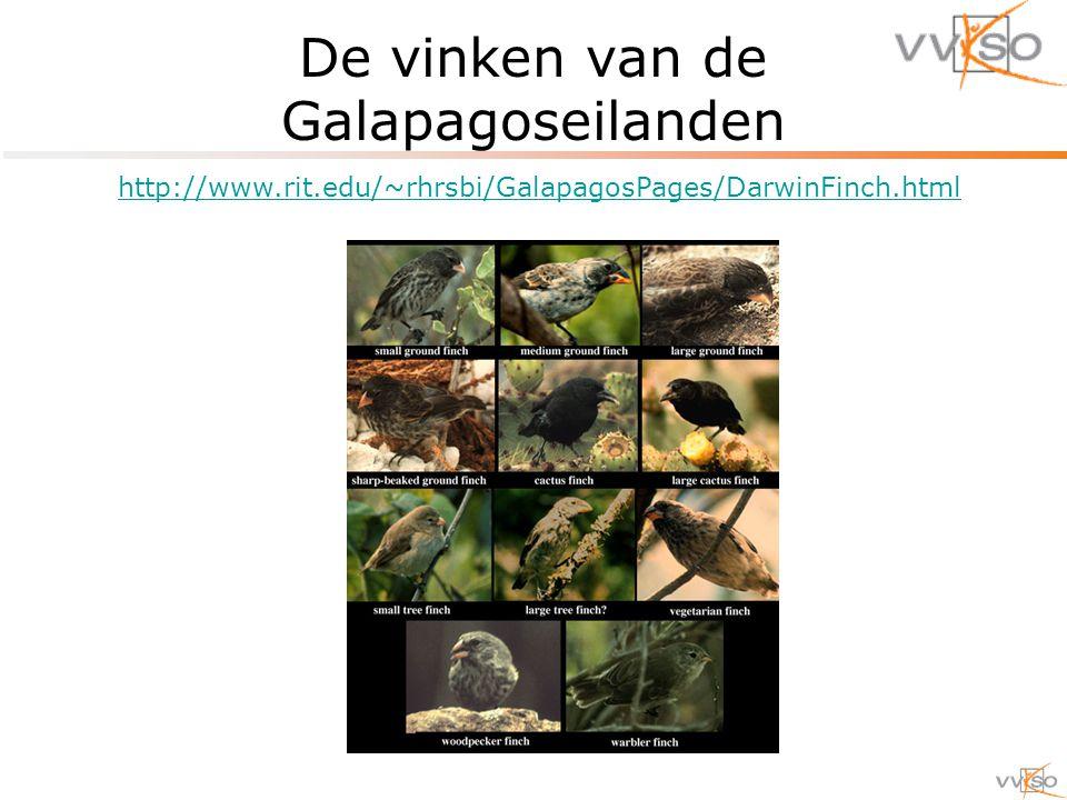 De vinken van de Galapagoseilanden http://www.rit.edu/~rhrsbi/GalapagosPages/DarwinFinch.html
