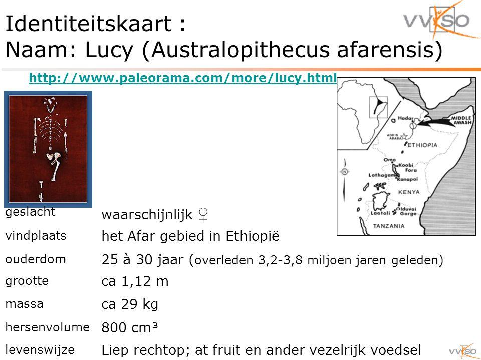 Identiteitskaart : Naam: Lucy (Australopithecus afarensis) geslacht waarschijnlijk ♀ vindplaats het Afar gebied in Ethiopië ouderdom 25 à 30 jaar ( overleden 3,2-3,8 miljoen jaren geleden) grootte ca 1,12 m massa ca 29 kg hersenvolume 800 cm³ levenswijze Liep rechtop; at fruit en ander vezelrijk voedsel http://www.paleorama.com/more/lucy.html