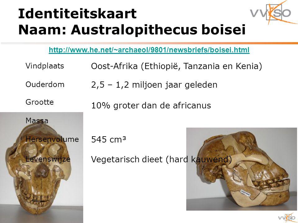 Identiteitskaart Naam: Australopithecus boisei Vindplaats Oost-Afrika (Ethiopië, Tanzania en Kenia) Ouderdom 2,5 – 1,2 miljoen jaar geleden Grootte 10% groter dan de africanus Massa Hersenvolume 545 cm³ Levenswijze Vegetarisch dieet (hard kauwend) http://www.he.net/~archaeol/9801/newsbriefs/boisei.html