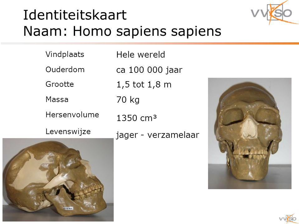 Identiteitskaart Naam: Homo sapiens sapiens Vindplaats Hele wereld Ouderdom ca 100 000 jaar Grootte 1,5 tot 1,8 m Massa 70 kg Hersenvolume 1350 cm³ Levenswijze jager - verzamelaar