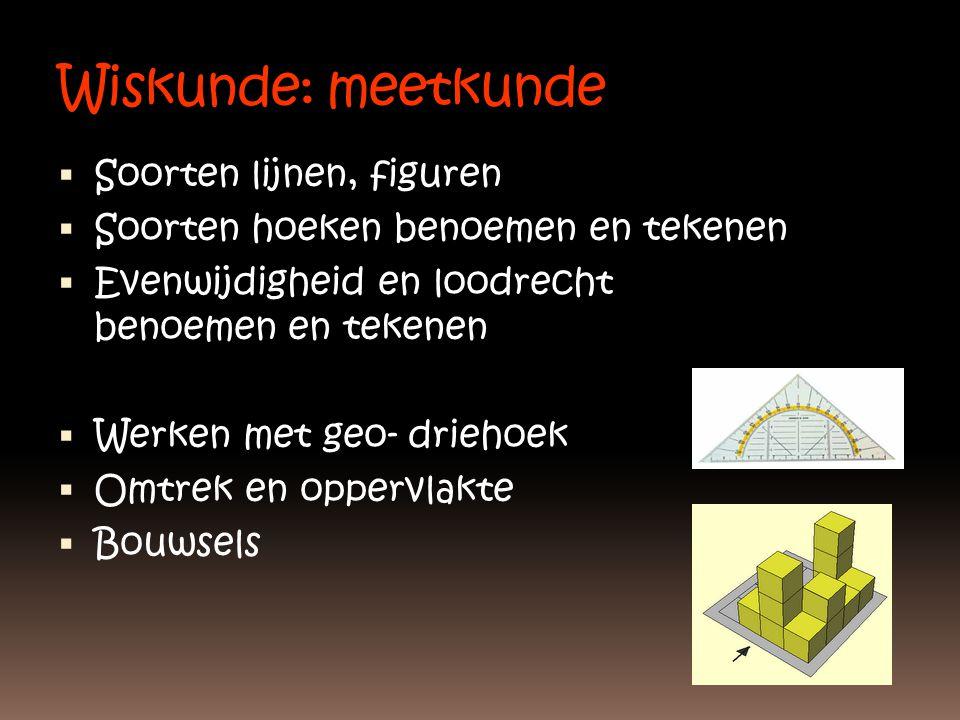 Wiskunde: meetkunde  Soorten lijnen, figuren  Soorten hoeken benoemen en tekenen  Evenwijdigheid en loodrecht benoemen en tekenen  Werken met geo-