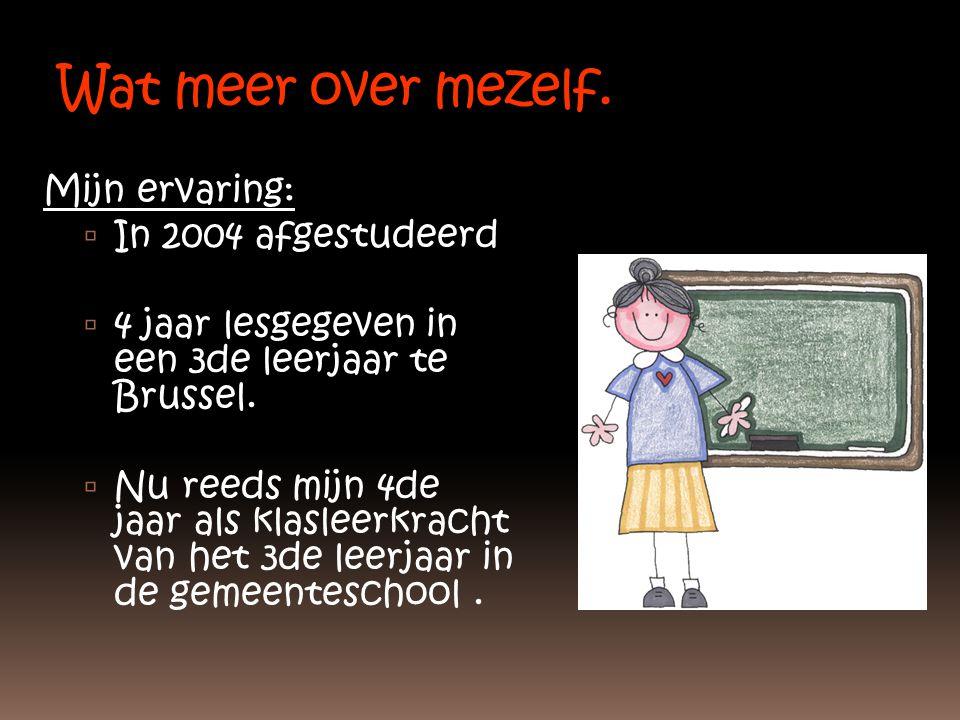 Wat meer over mezelf. Mijn ervaring:  In 2004 afgestudeerd  4 jaar lesgegeven in een 3de leerjaar te Brussel.  Nu reeds mijn 4de jaar als klasleerk