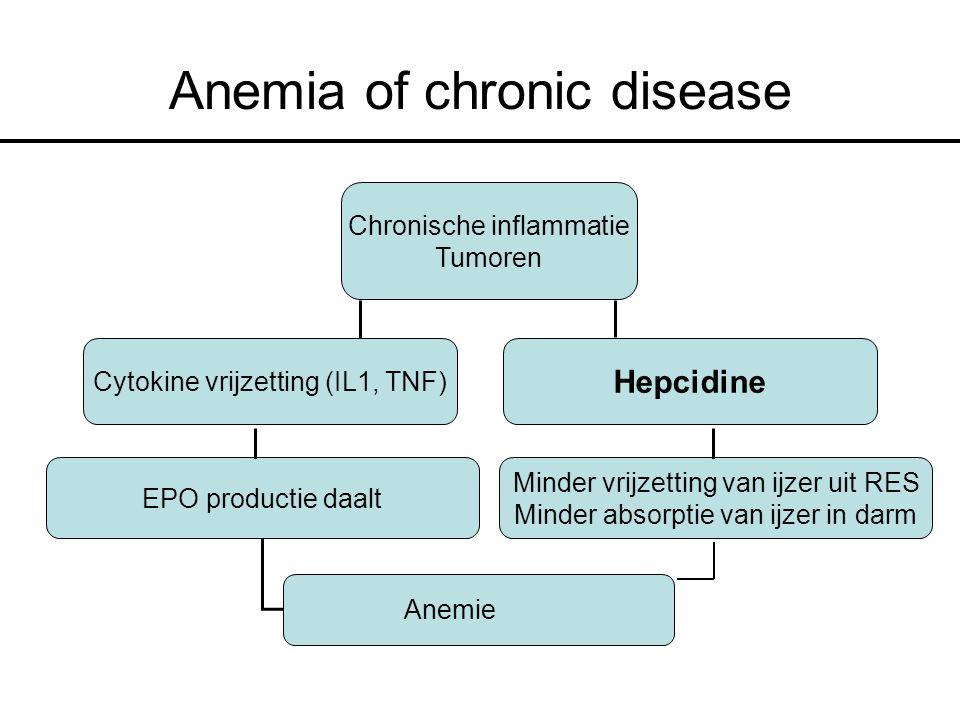Anemia of chronic disease Chronische inflammatie Tumoren Cytokine vrijzetting (IL1, TNF) EPO productie daalt Minder vrijzetting van ijzer uit RES Minder absorptie van ijzer in darm Anemie Hepcidine