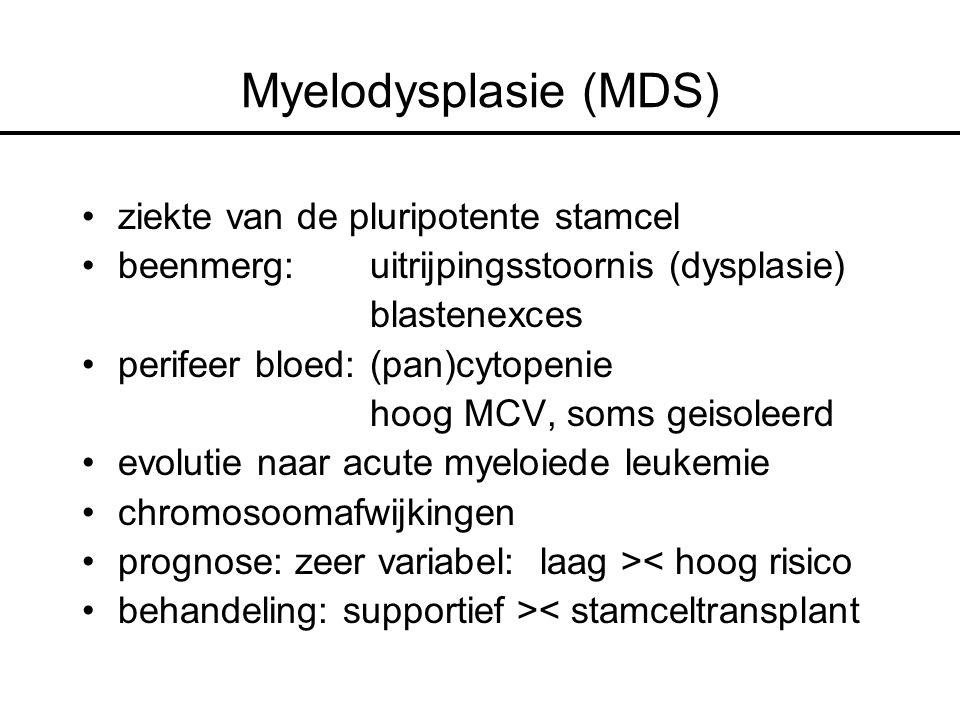 Myelodysplasie (MDS) ziekte van de pluripotente stamcel beenmerg: uitrijpingsstoornis (dysplasie) blastenexces perifeer bloed: (pan)cytopenie hoog MCV, soms geisoleerd evolutie naar acute myeloiede leukemie chromosoomafwijkingen prognose: zeer variabel: laag >< hoog risico behandeling: supportief >< stamceltransplant
