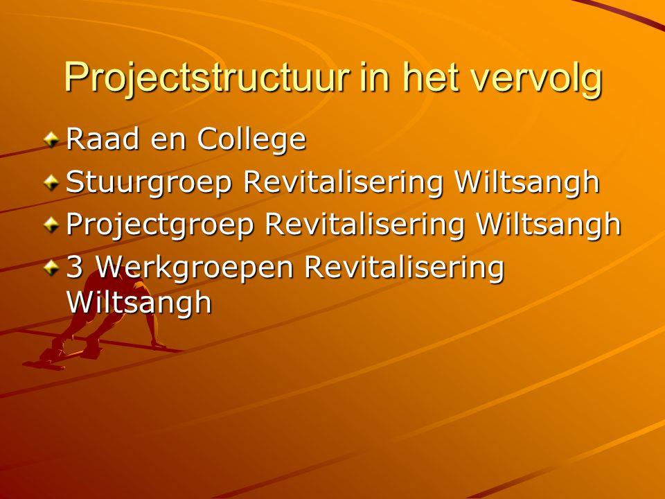 Projectstructuur in het vervolg Raad en College Stuurgroep Revitalisering Wiltsangh Projectgroep Revitalisering Wiltsangh 3 Werkgroepen Revitalisering