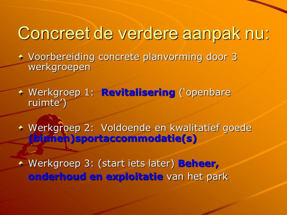 Concreet de verdere aanpak nu: Voorbereiding concrete planvorming door 3 werkgroepen Werkgroep 1: Revitalisering ('openbare ruimte') Werkgroep 2: Vold