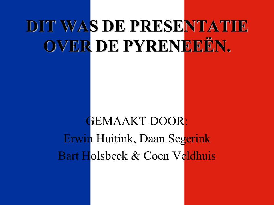 DIT WAS DE PRESENTATIE OVER DE PYRENEEËN. GEMAAKT DOOR: Erwin Huitink, Daan Segerink Bart Holsbeek & Coen Veldhuis