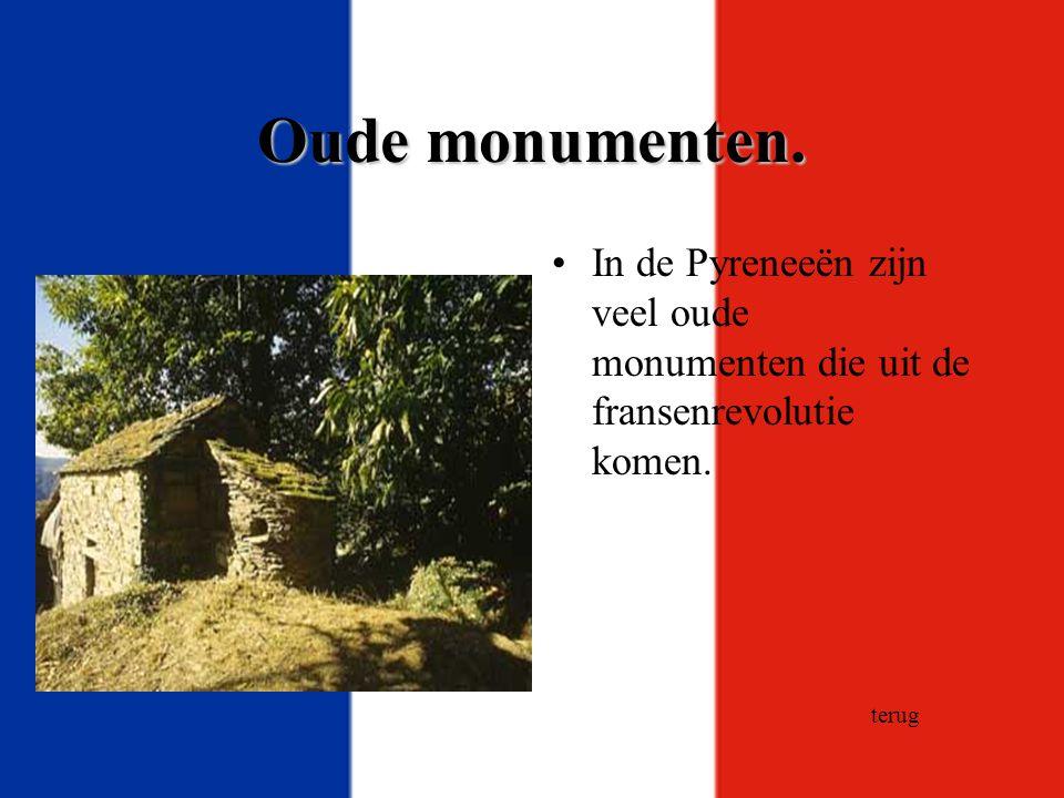 Oude monumenten. In de Pyreneeën zijn veel oude monumenten die uit de fransenrevolutie komen. terug