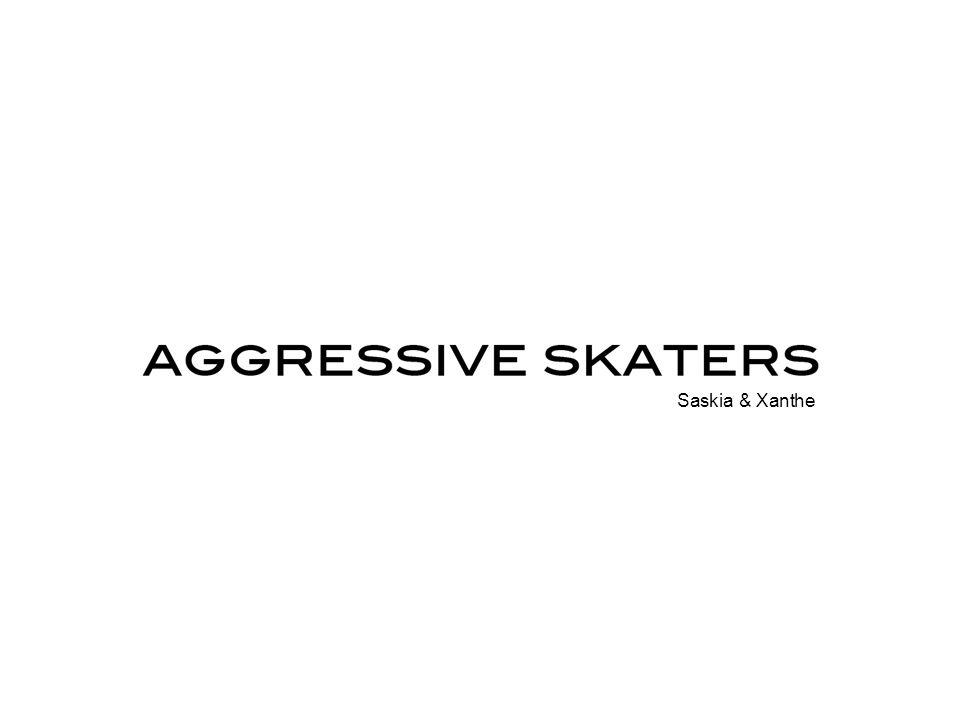 Korte reminder profiel Agressive skaters - vrijheid & ruimte park, vert, street specifiek kledingstijl specifieke merken helden cultuur competitie tricks relaxte sfeer creatief op verschillende vlakken.