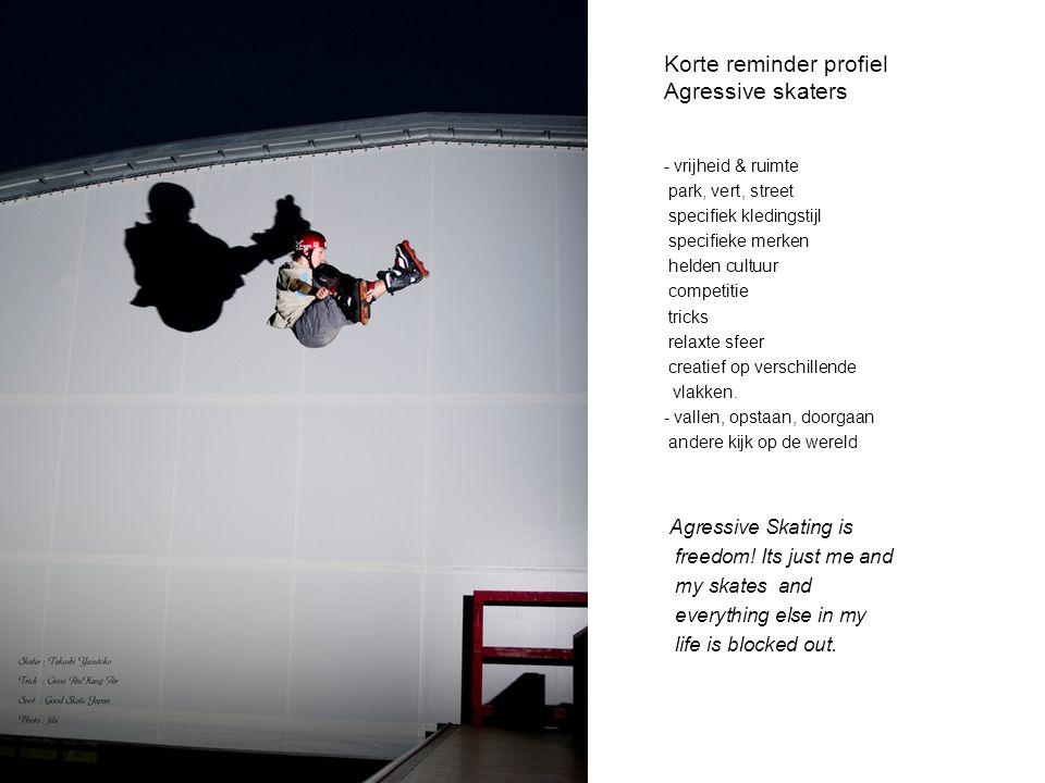 Korte reminder profiel Agressive skaters - vrijheid & ruimte park, vert, street specifiek kledingstijl specifieke merken helden cultuur competitie tri