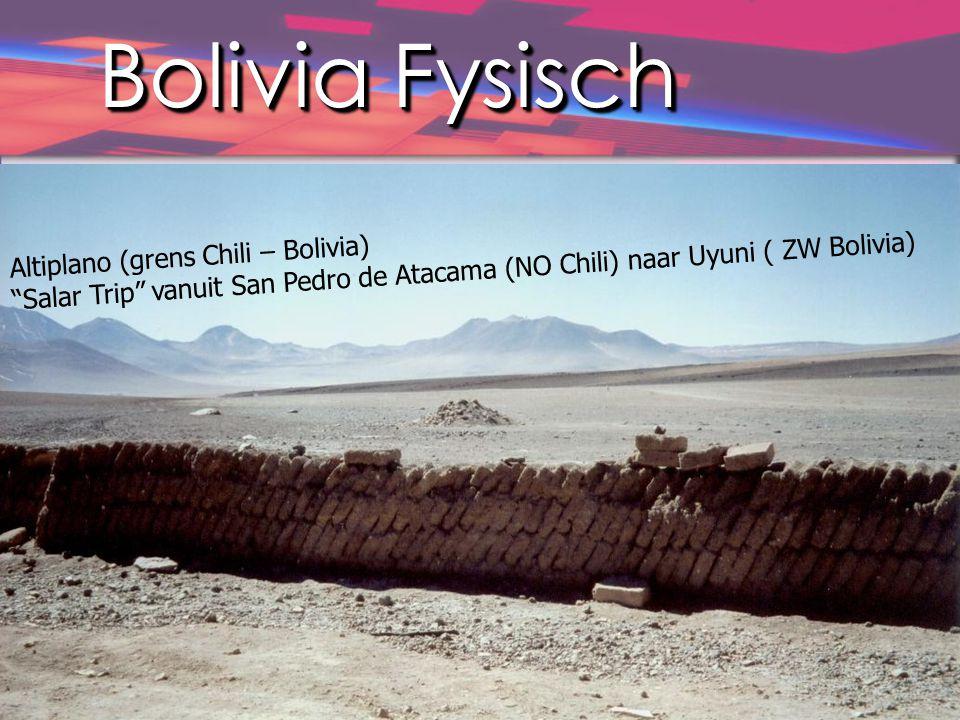 "Bolivia Fysisch Altiplano (grens Chili – Bolivia) ""Salar Trip"" vanuit San Pedro de Atacama (NO Chili) naar Uyuni ( ZW Bolivia)"