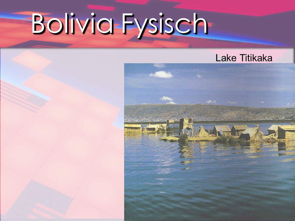 Bolivia Fysisch In het oosten liggen middelhoge bergmassieven met diepe, door rivieren uitgeslepen dalen (yungas).