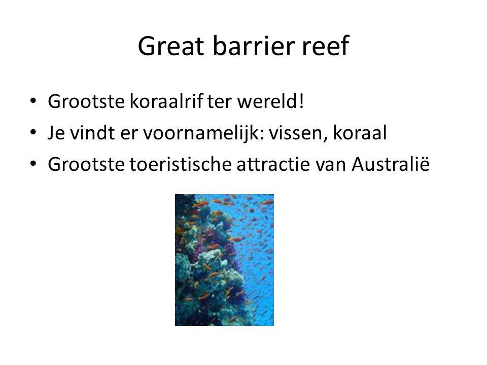 Great barrier reef Grootste koraalrif ter wereld! Je vindt er voornamelijk: vissen, koraal Grootste toeristische attractie van Australië