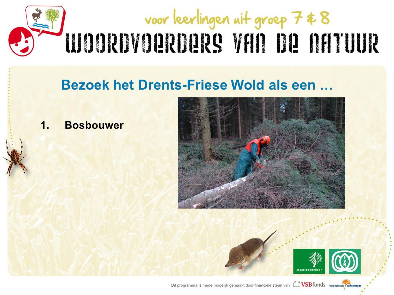 Bezoek het Drents-Friese Wold als een … 1.Bosbouwer