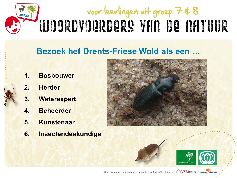 Bezoek het Drents-Friese Wold als een … 1.Bosbouwer 2.Herder 3.Waterexpert 4.Beheerder 5.Kunstenaar 6.Insectendeskundige