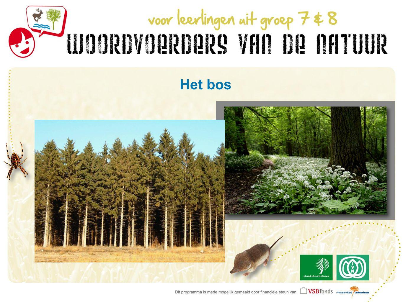 Bezoek het Drents-Friese Wold als een … 1.Bosbouwer 2.Herder 3.Waterexpert 4.Beheerder