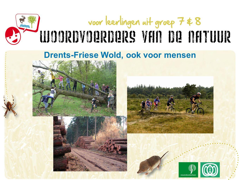 Drents-Friese Wold, ook voor mensen