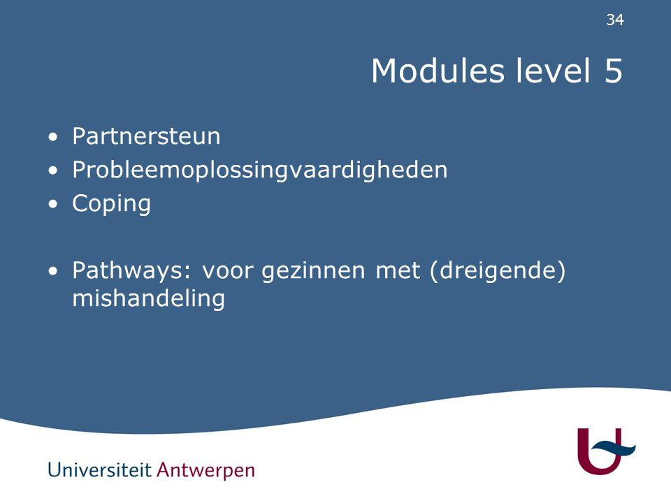 34 Modules level 5 Partnersteun Probleemoplossingvaardigheden Coping Pathways: voor gezinnen met (dreigende) mishandeling