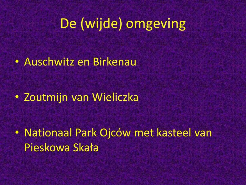 De (wijde) omgeving Auschwitz en Birkenau Zoutmijn van Wieliczka Nationaal Park Ojców met kasteel van Pieskowa Skała