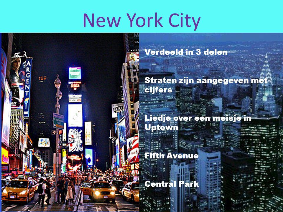 New York City Verdeeld in 3 delen Straten zijn aangegeven met cijfers Liedje over een meisje in Uptown Fifth Avenue Central Park