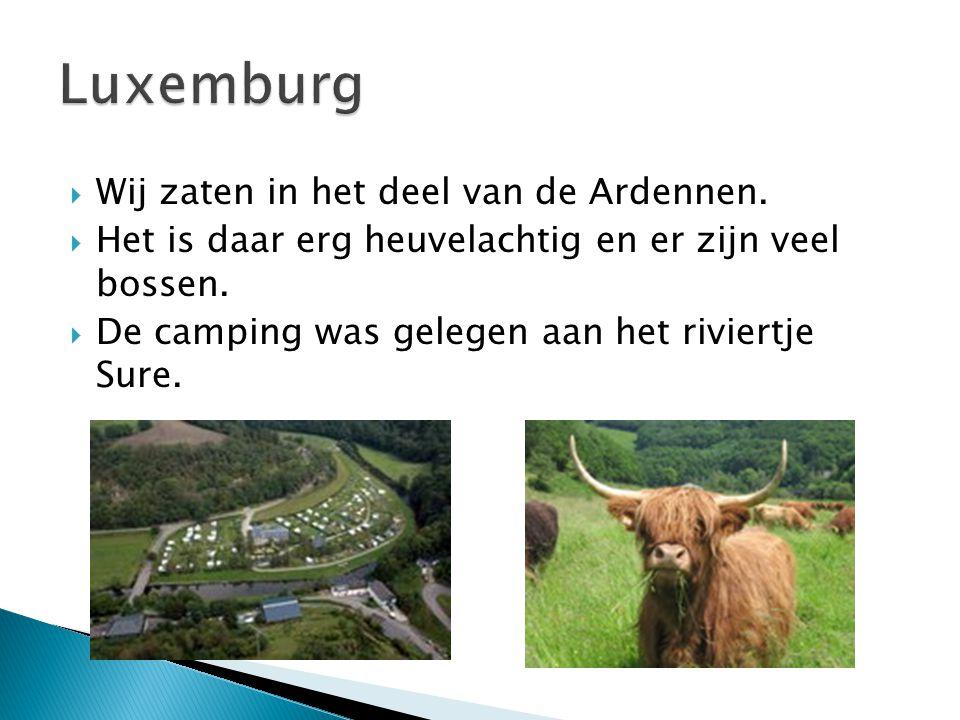  Wij zaten in het deel van de Ardennen.  Het is daar erg heuvelachtig en er zijn veel bossen.  De camping was gelegen aan het riviertje Sure.