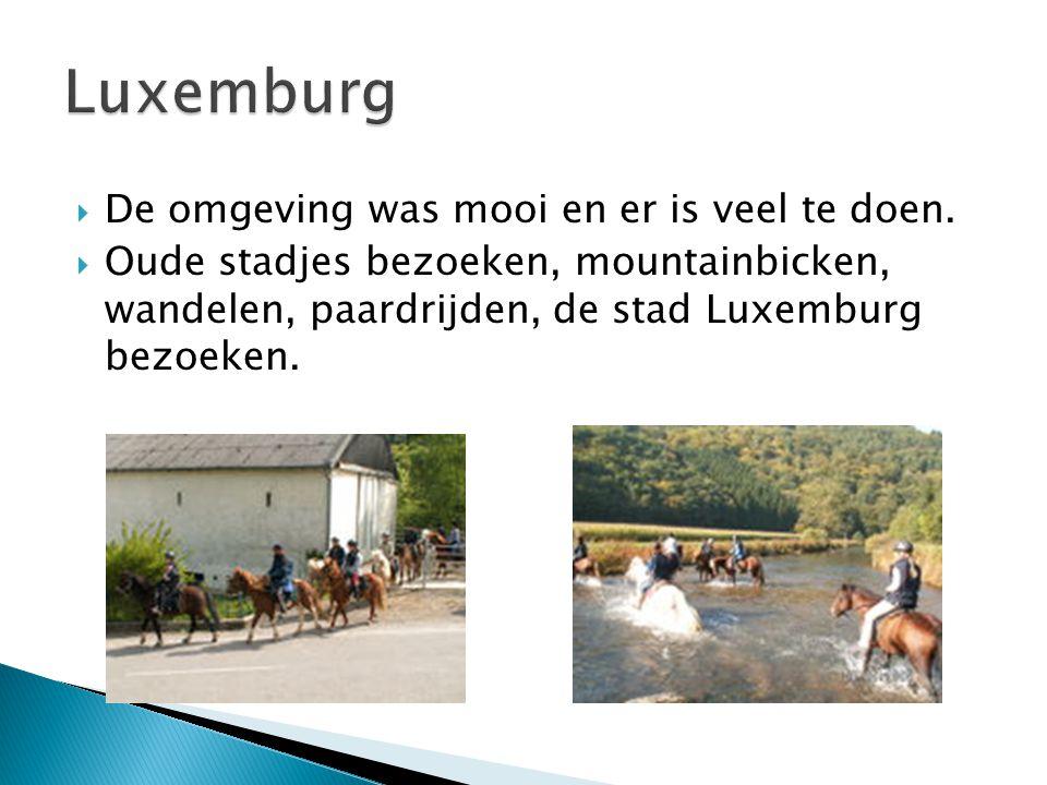  De omgeving was mooi en er is veel te doen.  Oude stadjes bezoeken, mountainbicken, wandelen, paardrijden, de stad Luxemburg bezoeken.
