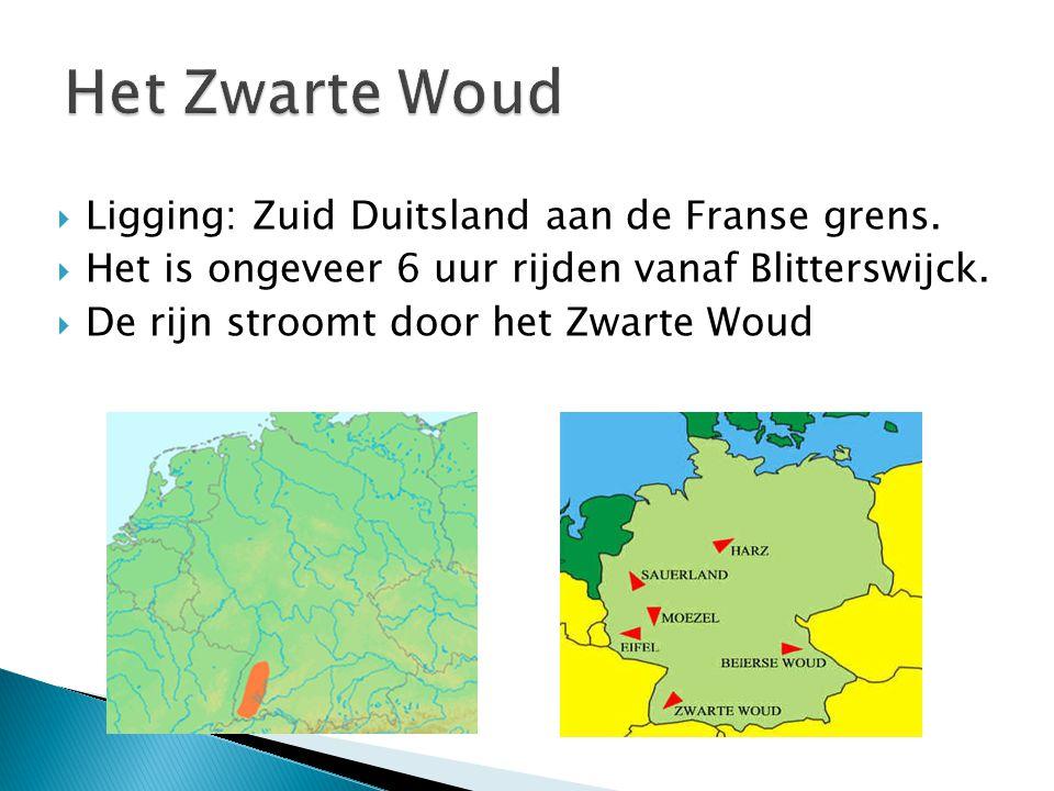  Ligging: Zuid Duitsland aan de Franse grens.  Het is ongeveer 6 uur rijden vanaf Blitterswijck.  De rijn stroomt door het Zwarte Woud