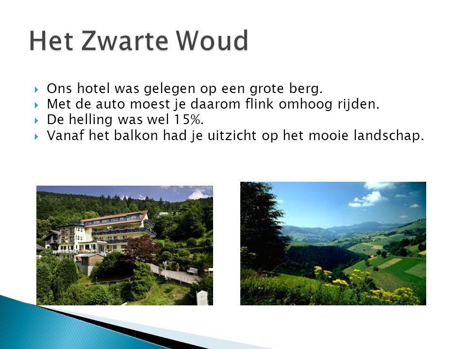  Ons hotel was gelegen op een grote berg.  Met de auto moest je daarom flink omhoog rijden.  De helling was wel 15%.  Vanaf het balkon had je uitz