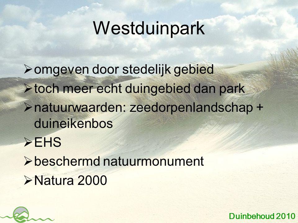 Westduinpark  omgeven door stedelijk gebied  toch meer echt duingebied dan park  natuurwaarden: zeedorpenlandschap + duineikenbos  EHS  beschermd natuurmonument  Natura 2000 Duinbehoud 2010