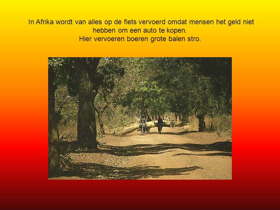In Afrika wordt van alles op de fiets vervoerd omdat mensen het geld niet hebben om een auto te kopen.