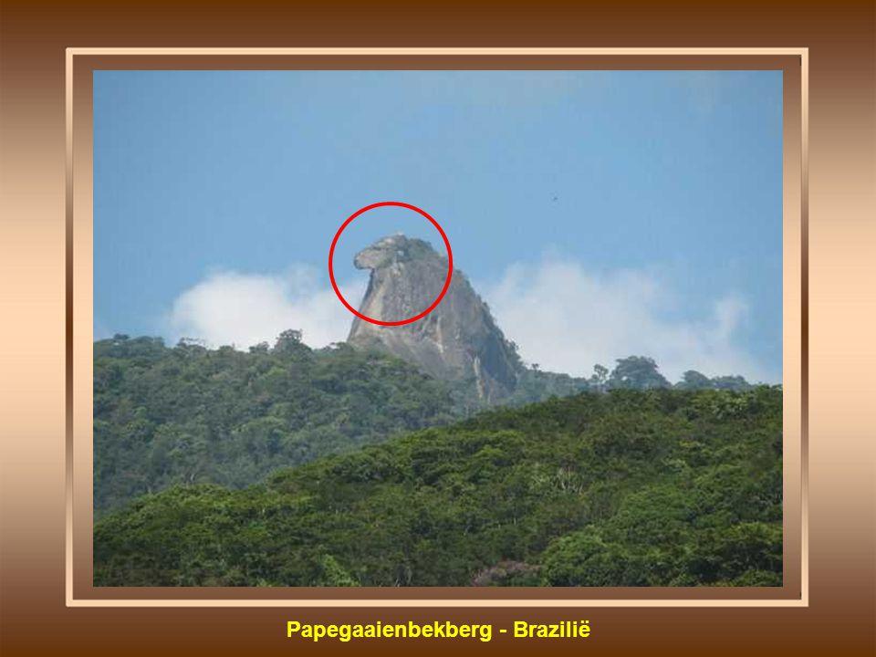 Papegaaienbekberg - Brazilië