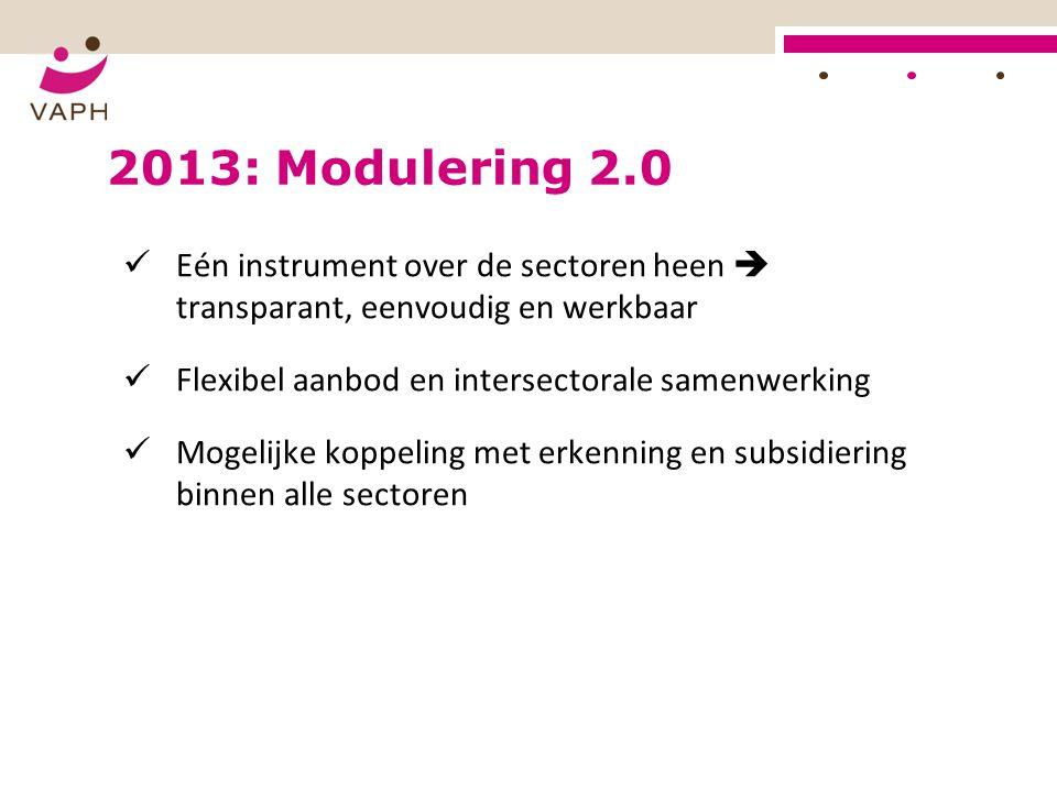 2013: Modulering 2.0 Eén instrument over de sectoren heen  transparant, eenvoudig en werkbaar Flexibel aanbod en intersectorale samenwerking Mogelijk