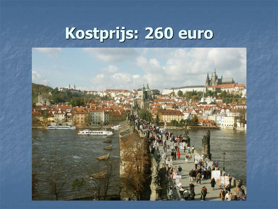 Kostprijs: 260 euro