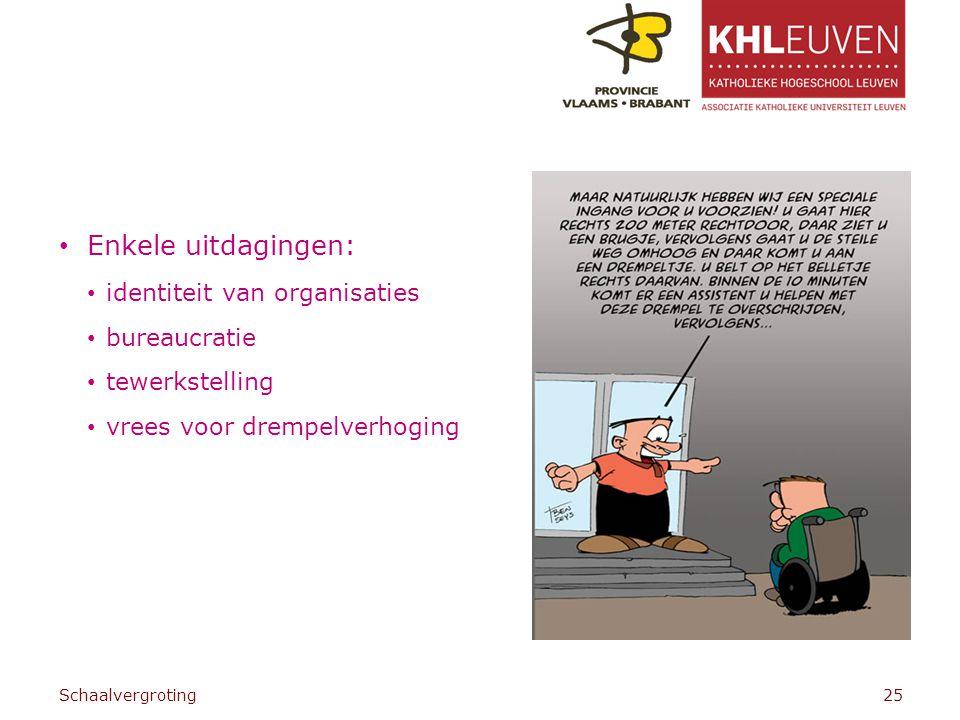 Enkele uitdagingen: identiteit van organisaties bureaucratie tewerkstelling vrees voor drempelverhoging Schaalvergroting25