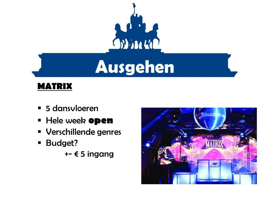 Ausgehen MATRIX  5 dansvloeren  Hele week open  Verschillende genres  Budget? +- € 5 ingang